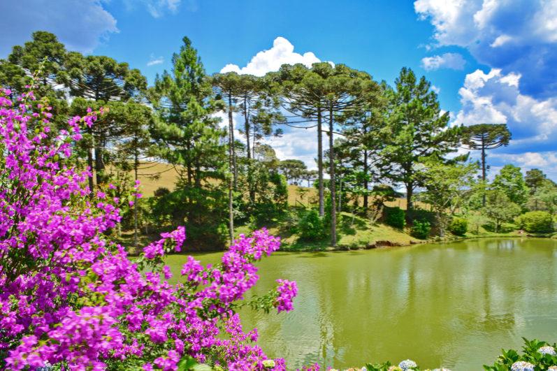 Conheça 03 opções de sítio para comprar no oeste de Santa Catarina